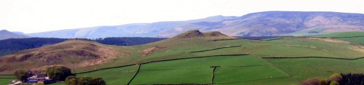 Stoney Ridge